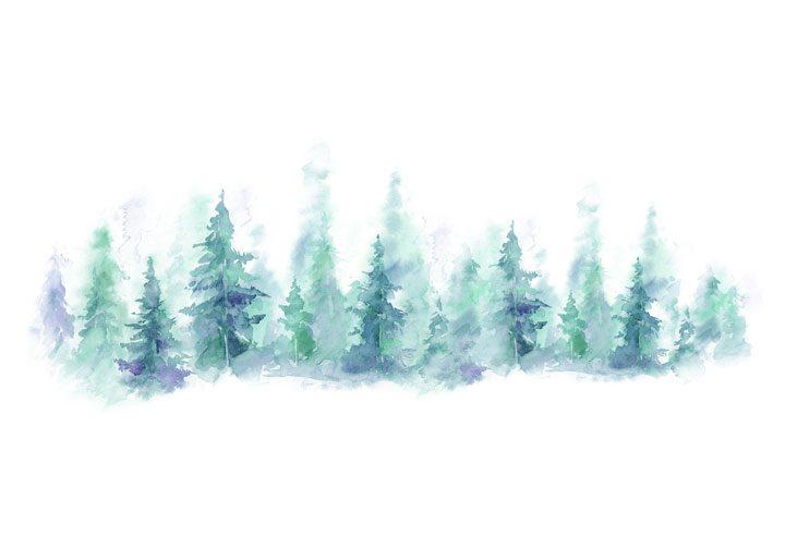 Vykort skog